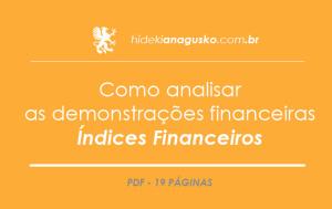 Como analisar as demonstrações financeiras – Índices Financeiros